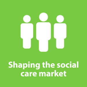 shaping care market