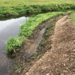 River Cole Habitat Improvement Project Phase 2
