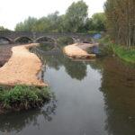 Meriden Park Wetland Improvements