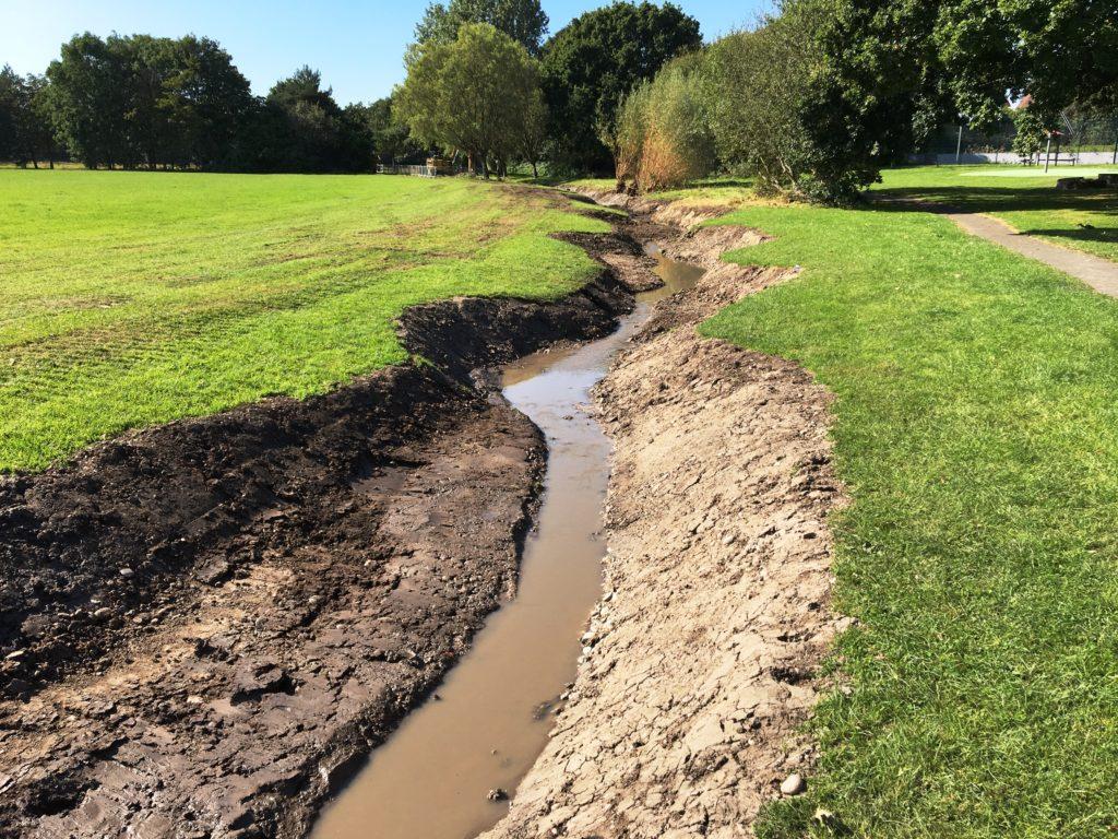 Hatchford Brook – Back to Nature